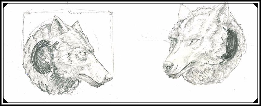 Будущий прототип шарма Волк, рисунок карандашом.